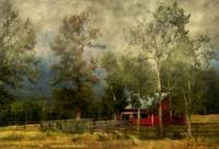 Storm-Approaching-White-Birch-Cottage_art